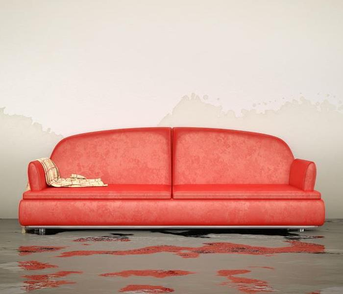 Water Damage How Professionals Remove Water From Your Raleigh Home