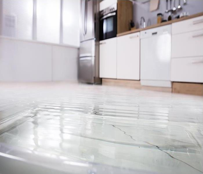 Water Damage Why Professional Restoration Is A Wise Choice For Water Damage In Your Raleigh Home