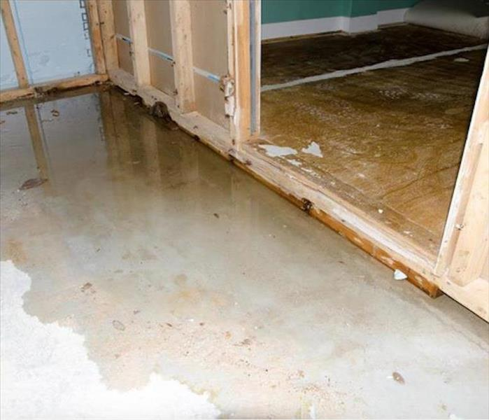 Why SERVPRO Raleigh Property Owners Benefit from SERVPRO's Advanced Techniques for Water Mitigation
