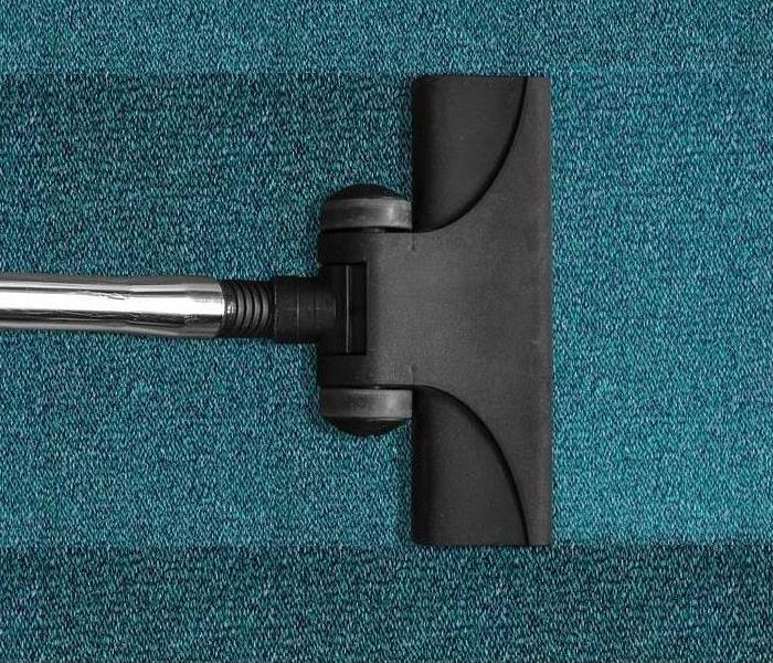 Cleaning What to Look for in a Professional Carpet Cleaning Company