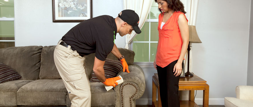 Raleigh, NC carpet upholstery cleaning